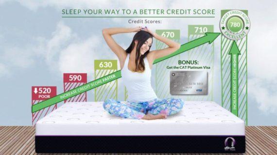 credit-score-cat-visa-1024x512